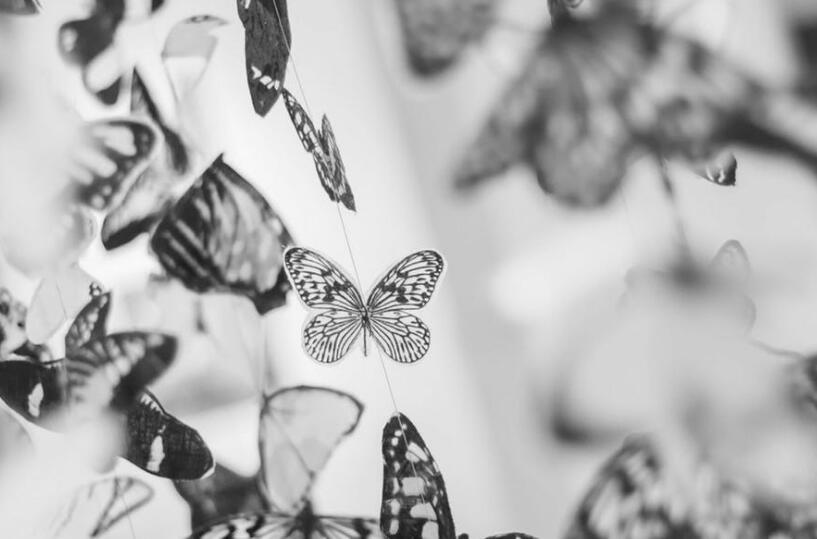 蝴蝶斑的形成原因