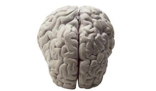 脑炎是怎么引起的