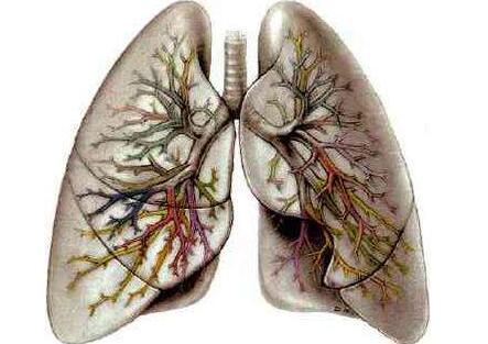 肺气肿如何治疗
