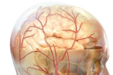 肺心脑病的发病原因是什么